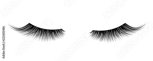 Black False eyelashes. Mascara single decorative element. Wallpaper Mural