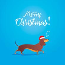 Merry Christmas. Funny Cartoon...