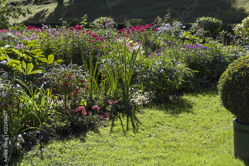 Foto op Canvas Tuin Flower beds, garden plants on the territory of the country.
