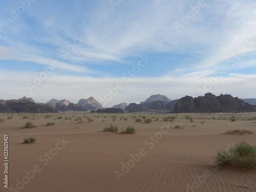 Staande foto Cappuccino Jordan, Wadi Rum desert