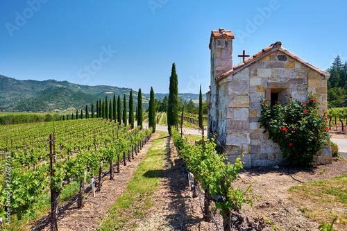 Staande foto Verenigde Staten Vineyards with chapel in California