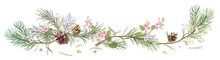 Horizontal Border With Pine Branches, Cones, Spring Blossom. Needles On White Background, Hand Digital Draw, Watercolor Style, Decorative Botanical Illustration For Design, Christmas Tree, Vector