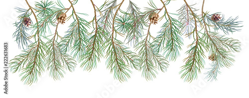 Fényképezés  Horizontal border with pine branches and cones, needles on white background, han