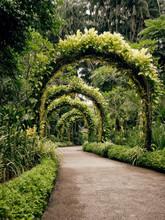 Singapore, Botanic Garden, Archway
