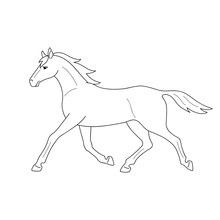 Isolated Black Outline Running, Trotting Horse On White Background. Side View. Curve Lines. Page Of Coloring Book.