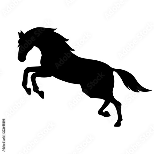 Fototapeta Isolated black silhouette of galloping, jumping horse on white background. Side view. obraz