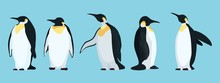 Bright Penguins Characters In ...