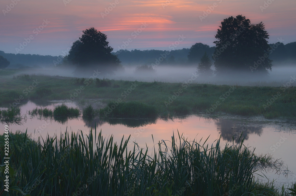 Fototapeta Mgły poranka