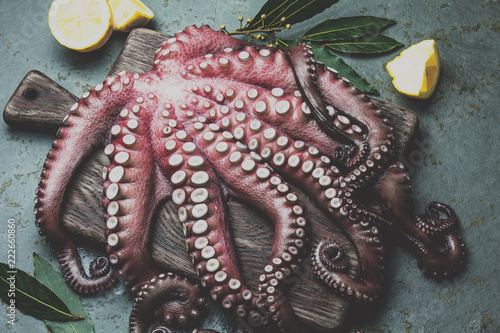 Fotografie, Obraz  Raw fresh octopus on wooden table with laurel. Top view