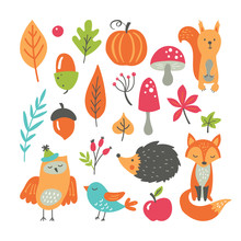 Autumn Concept With Fall Season Collection Of Forest Woodland Animals