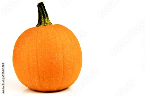 orange pumpkin isolated on a white background with copy space