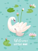 Illustration Of Beautiful Swan...