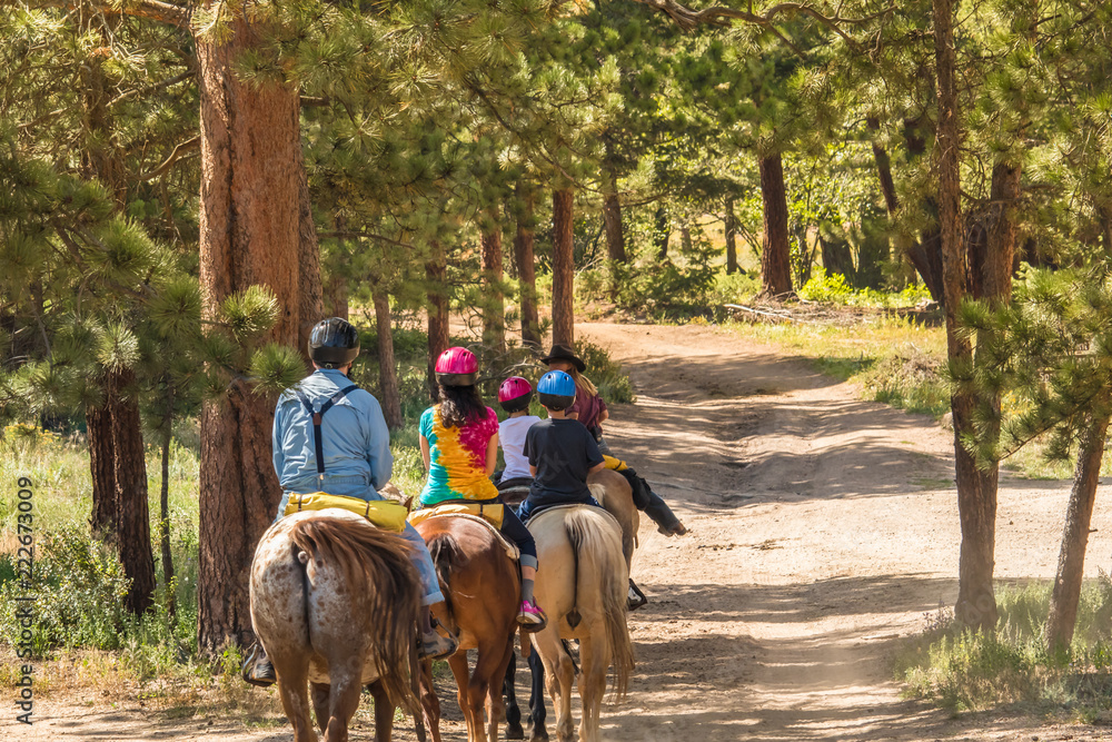 Fototapety, obrazy: Family of four taking a horseback riding lesson in the woods in the Rocky Mountains, Colorado, in the summer