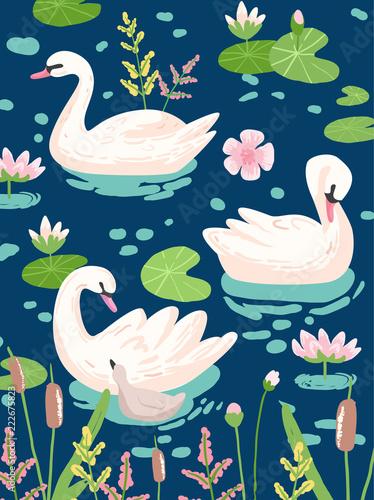 Fototapeta premium Ilustracja pięknych łabędzi z liliami wodnymi do druku plakatu, pozdrowienia dla dzieci, zaproszenie, ulotka sklepu dla dzieci, broszura, okładka książki w wektorze