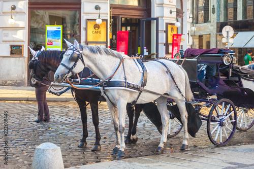 Horse-drawn carriage or Fiaker, popular tourist attraction, on Michaelerplatz in Vienna, Austria