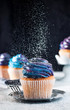 canvas print picture - Vanilla cupcake sprinkled with sugar powder on black background