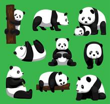 Panda Bear Nine Poses Cartoon ...