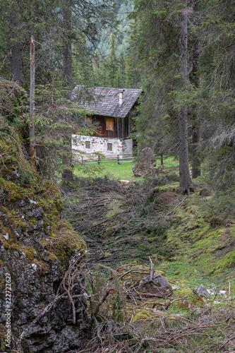 Spoed Foto op Canvas Khaki Dolomites Italy, nature and landscape