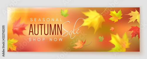 Obraz Autumn sale banner - fototapety do salonu