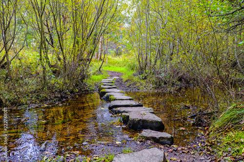 Fotografie, Obraz  Stepping stones Newtonmore