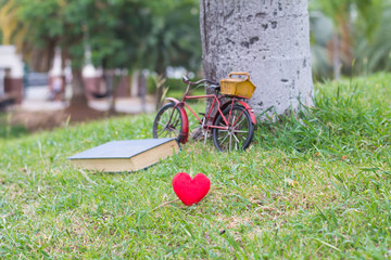 Red heart in grass on book background,