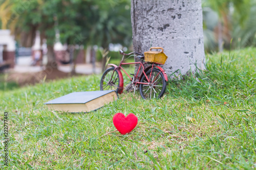 Poster Jardin Red heart in grass on book background,