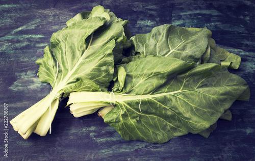 Fotografie, Obraz  Fresh organic mangold