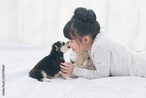 Little asian girl lying with  siberian husky puppy on bed Poster Mural XXL