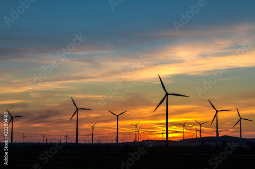 Fotografiet  Group of wind power turbines at a sunset.