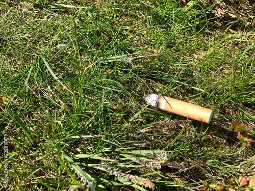 Fényképezés  Cigarette end discarded on morrland