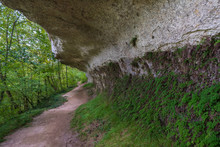 Overhanging Rock Shelter In Th...
