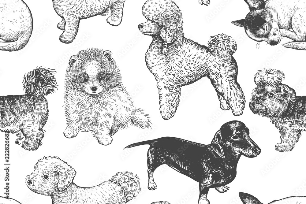 Seamless pattern. Cute little puppies. Hand-made drawing of dogs.