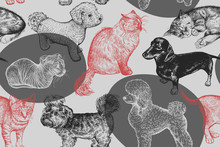 Seamless Pattern. Cute Puppies And Kittens. Hand-made Drawing Of Dogs And Cats