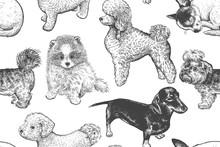 Seamless Pattern. Cute Little ...