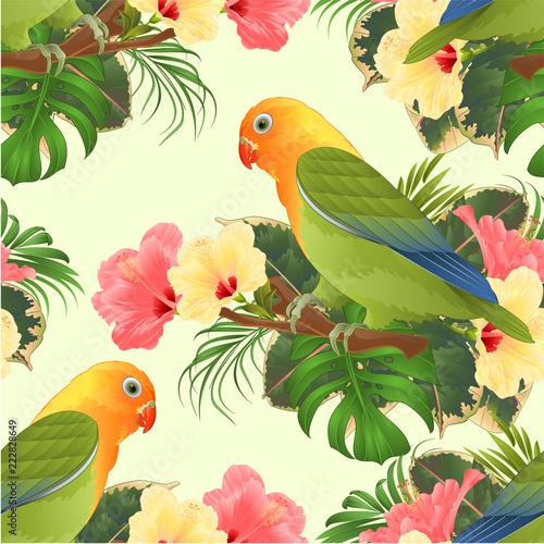 Fotomural Seamless texture Parrot lovebird Agapornis tropical bird  standing on a branch a