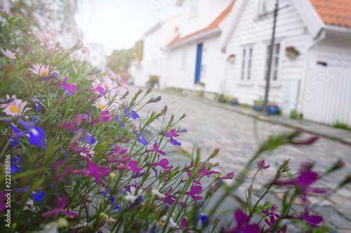 Poster Scandinavie Typische skandinavische Siedlung