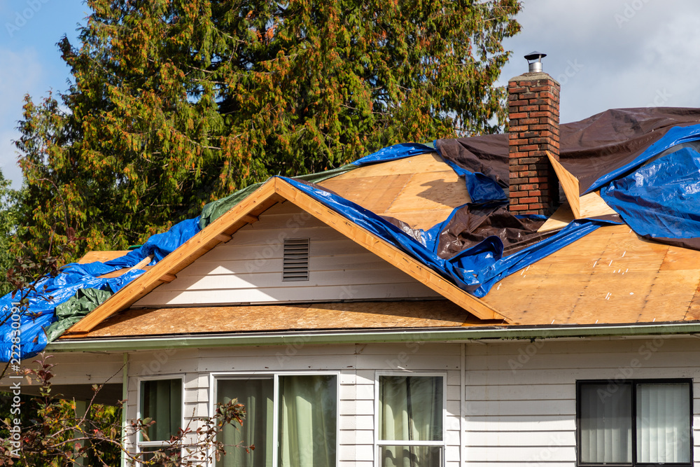 Fototapety, obrazy: Pylwood showing under tarps on roof during repair