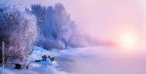 Poster Light pink Beautiful winter landscape scene background with snow covered trees and iced river. Beauty sunny winter backdrop. Wonderland. Frosty trees in snowy forest