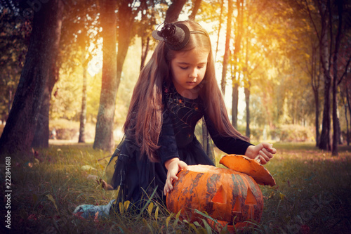 Fotografie, Obraz  Girl in a witch costume with a pumpkin in the forest