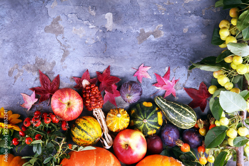 Fototapety, obrazy: Autumn nature concept. Fall fruit and vegetables on wood. Thanksgiving dinner. Plums and pumpkin with sunflowers and apples.