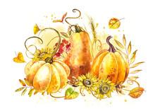 Pumpkins Composition. Hand Dra...