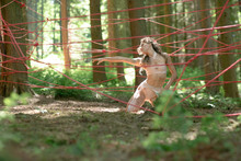 Girl Dancing On Forest With Red Ropes