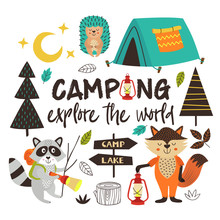 Camping Animals Explore  The W...
