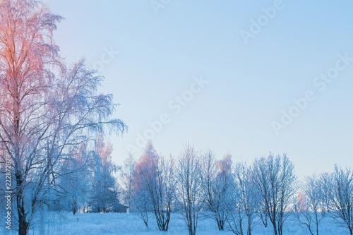 Foto op Aluminium Purper the beautiful winter landscape