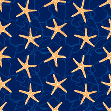 Seamless Pattern With Star Fish.