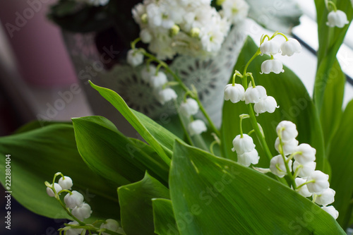Deurstickers Lelietje van dalen lily of the valley