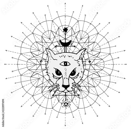 Cat muzzle with mystic symbols against sacred geometry