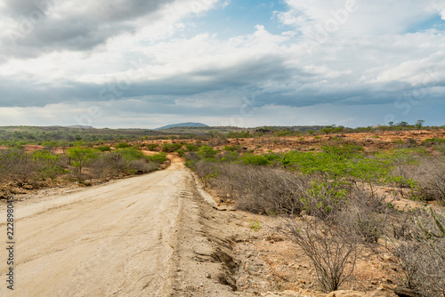 Foto op Canvas Baksteen Countryside landscape at Cariri, Paraiba, Brazil