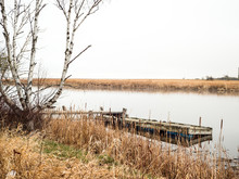Beautiful Picturesque Outdoor Scene Of An Old Wooden Pier Sticking Out Into The Calm Water Of Warroad River At Muskeg Bay In Minnesota With Trees, Reeds, Grasses And Cattails Along The Shoreline.