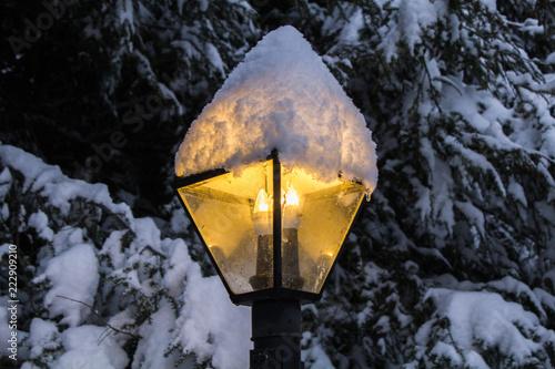 Fotografie, Obraz  Snowy Lamp Post